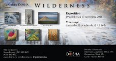 Dosha Gallery, Wilderness - 2016